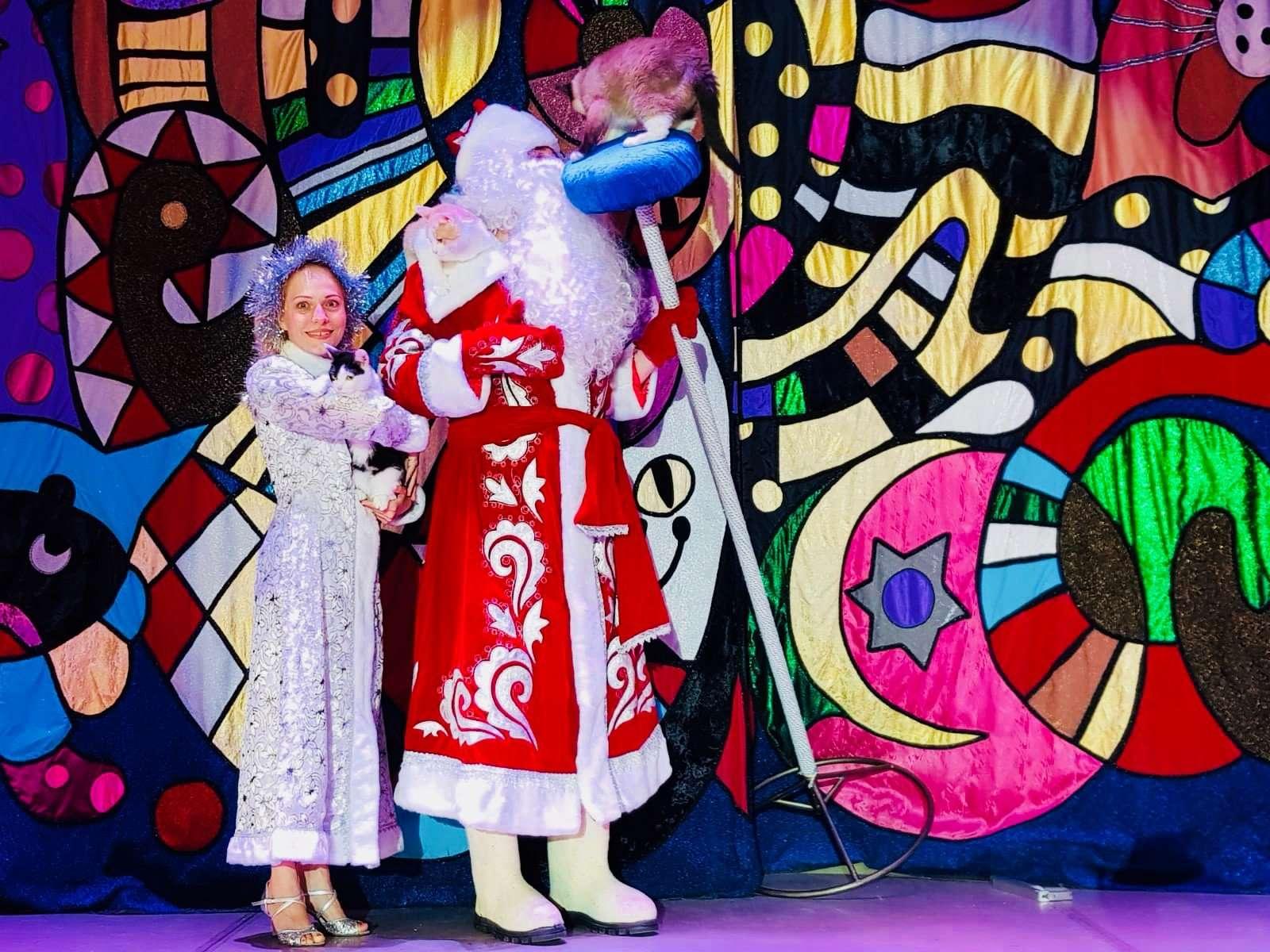 Как коты спасли Федору: театр кошек Юрия Куклачева на новогоднем спектакле в Доме музыки